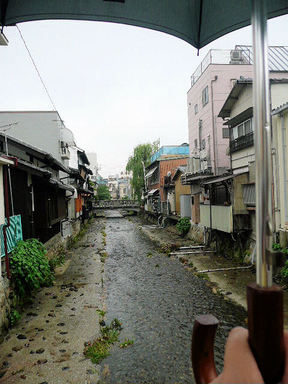 Img20116158