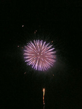 Img20118273